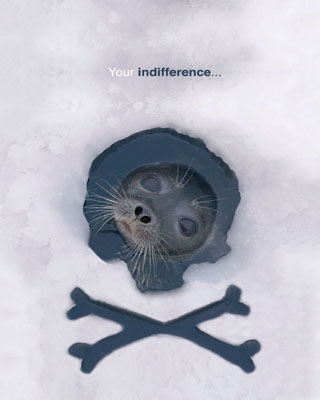 your indifference