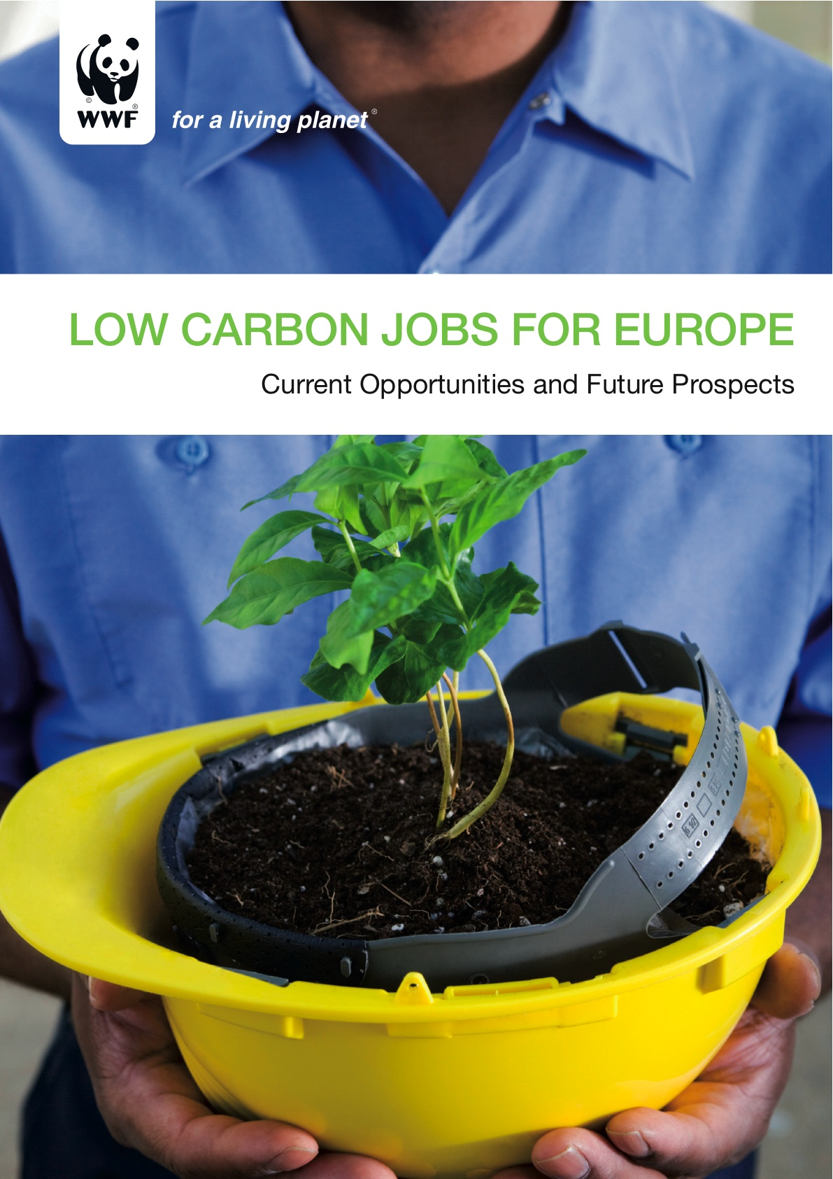 Low Carbon Jobs by WWF