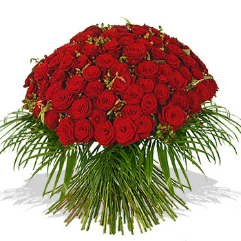 100red roses