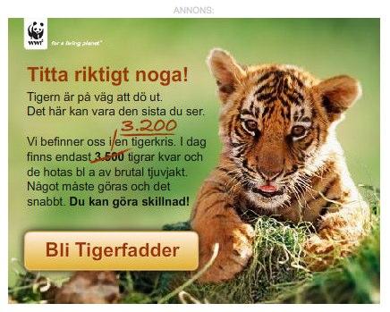DN tiger