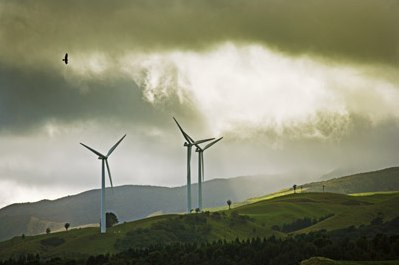 wind turbine kill birds 1.jpg JPEG bild 400x267