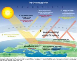 IPCC flat earth