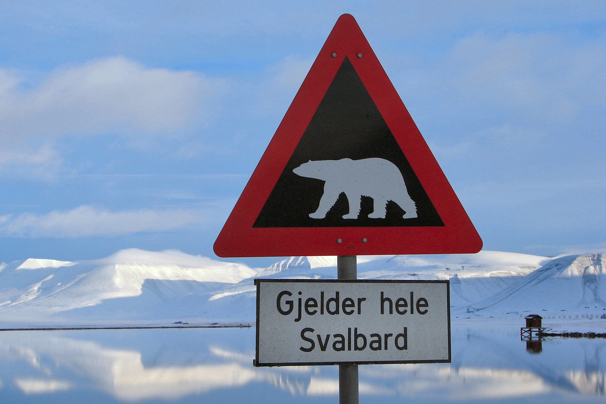 Polar Bear Warning Longyearbyen