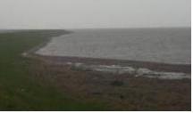 Dansk kustlinje