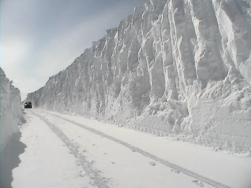 Labrador highwayII