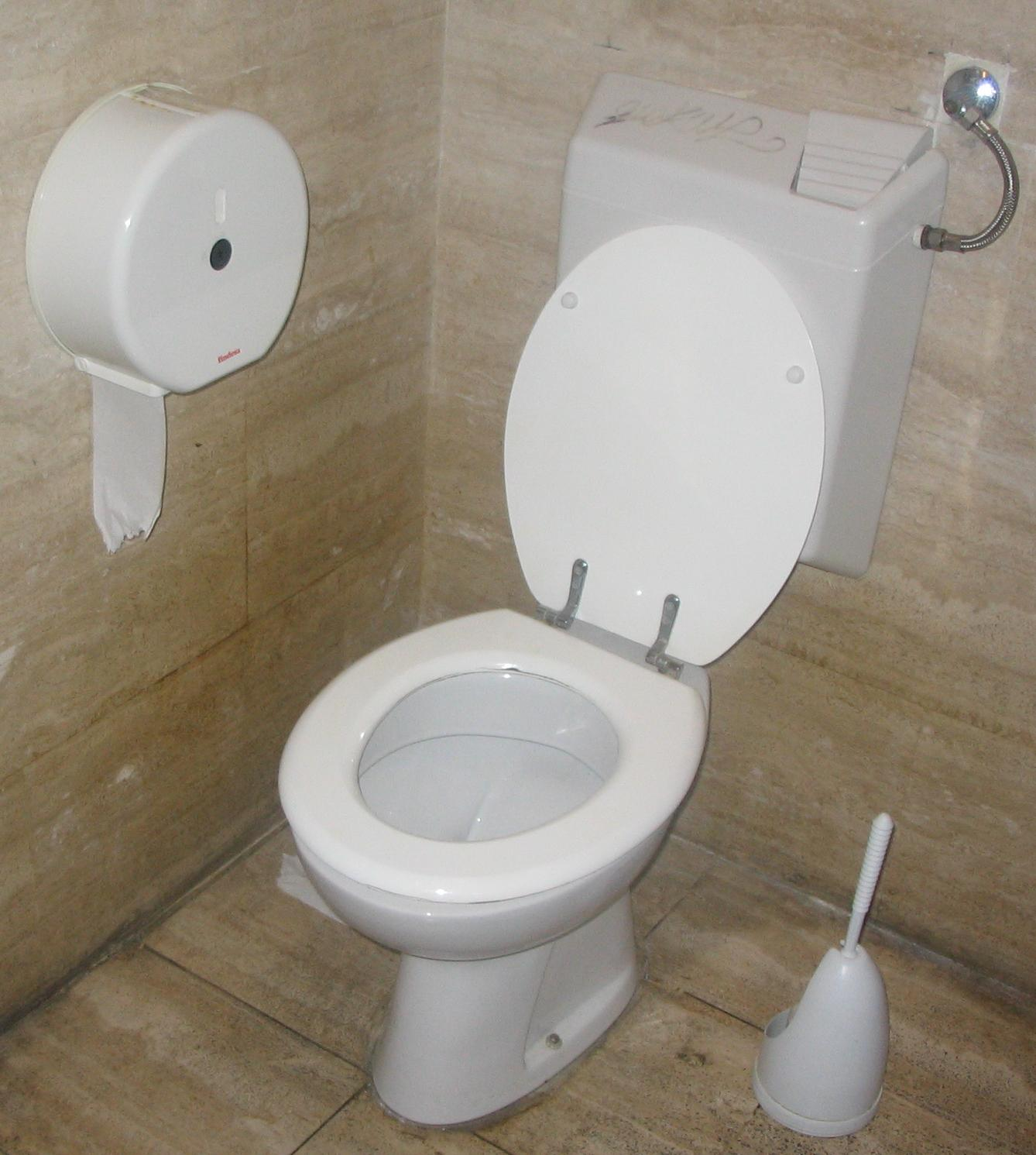 Toilet_with_flush_water_tank