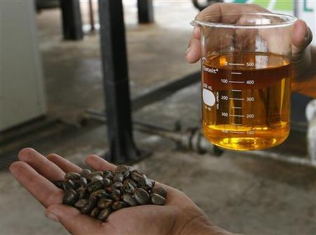 A worker shows a sample of biodiesel made from castor beans at a biodiesel refinery in Iraquara
