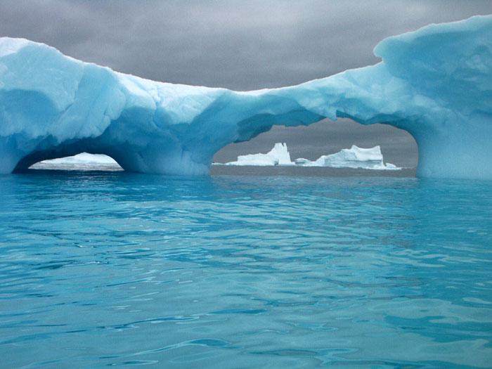 Arktis avsmaltning hot mot isbjornarna
