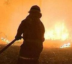 Australien brand