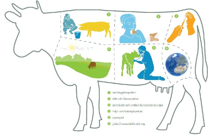 Jordbruksverket om kött