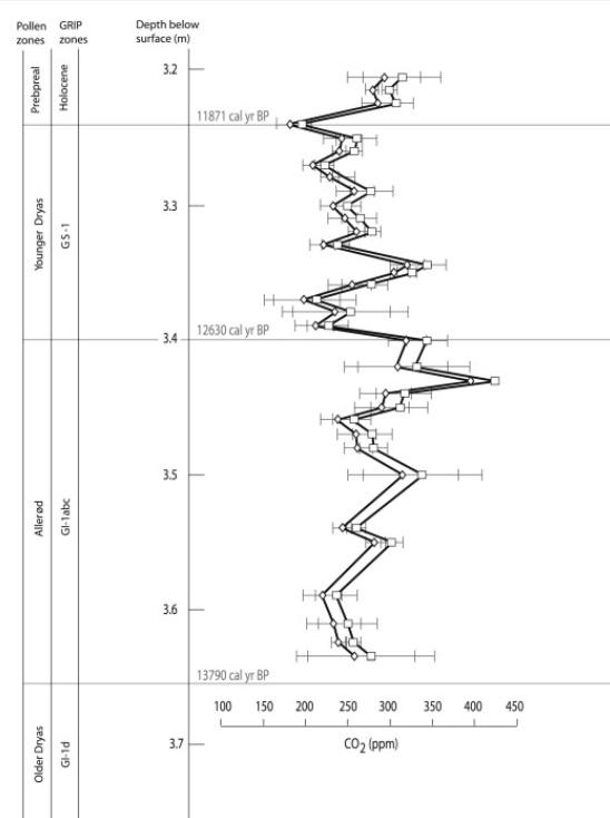 Koldioxidrekonstruktion från dvärgbjörk