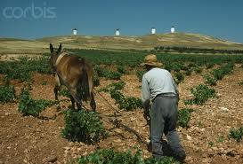 spanish farmer
