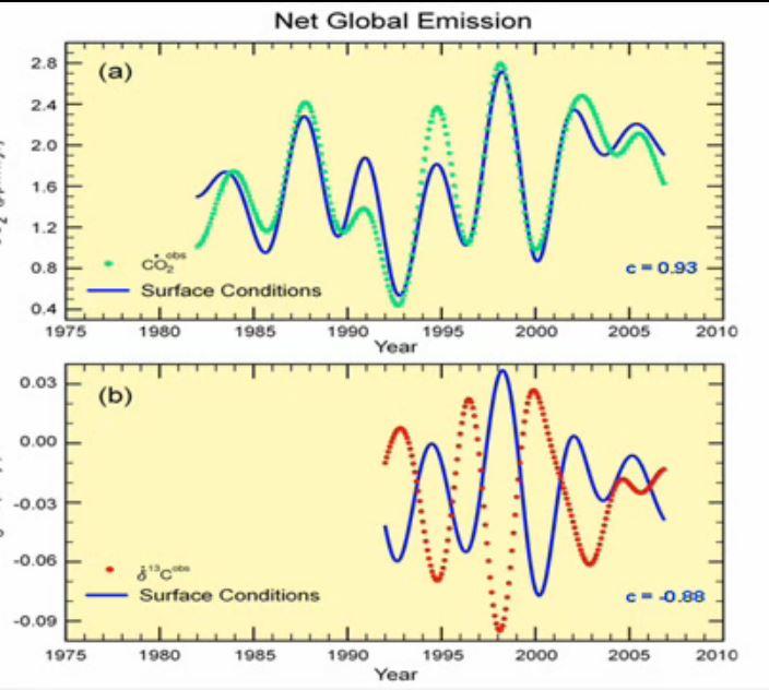 Net emissions C och 13C