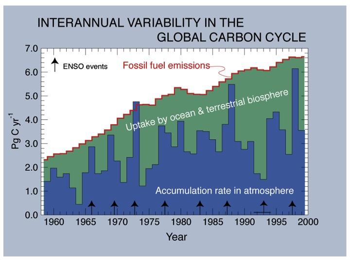 CO2 o ENSO