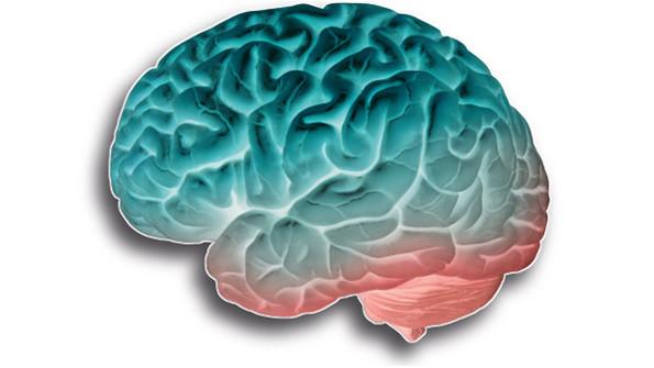hjärnkraft