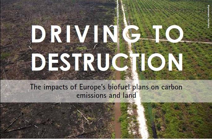 Driving to destruction.bmp