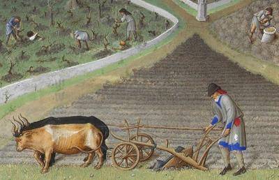 medeltid jordbruk