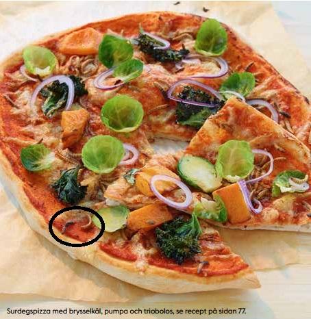 pizza med larver