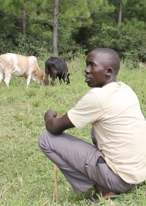 Klimatskog i Uganda