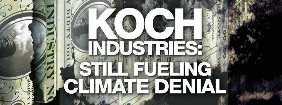 koch-openspace