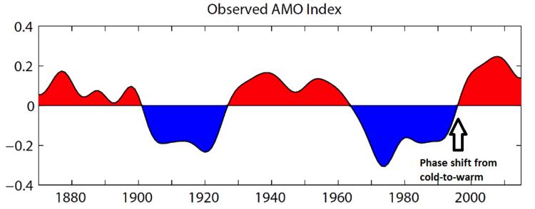 AMO Index