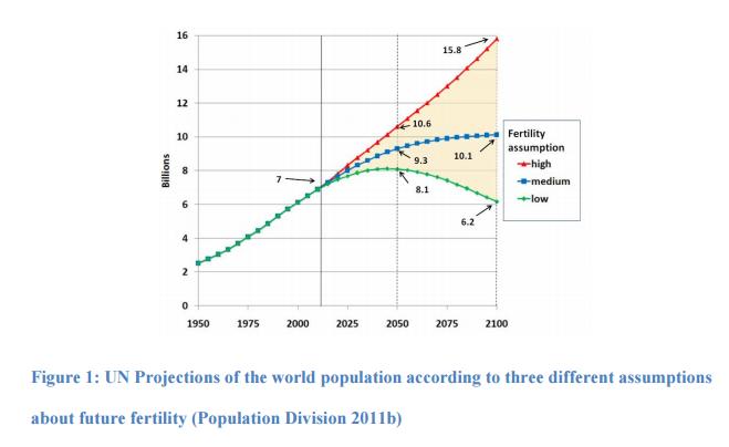 UN Fertility