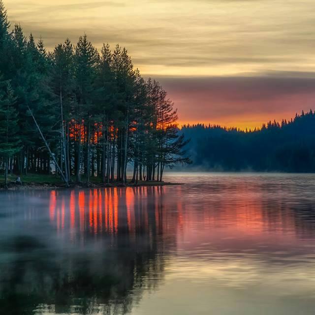 vacker naturbild