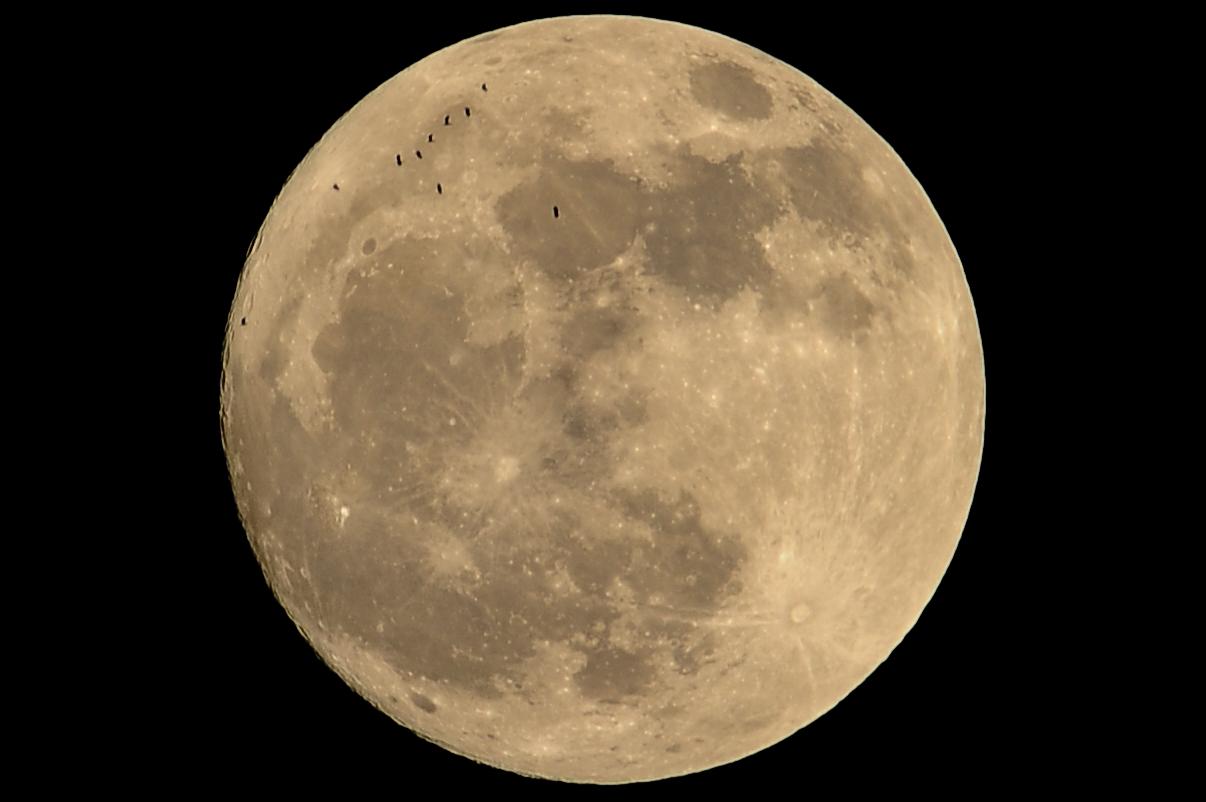 Tranor mot måne