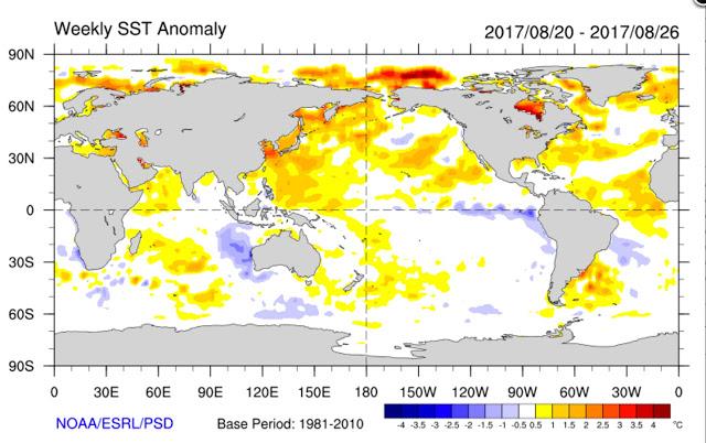 NOAA_SST_anomaly_20170820-20170826