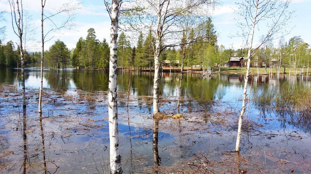 varflod1_992