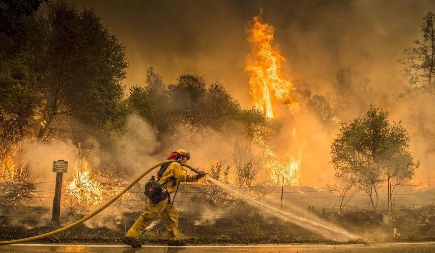 skogsbrand 2
