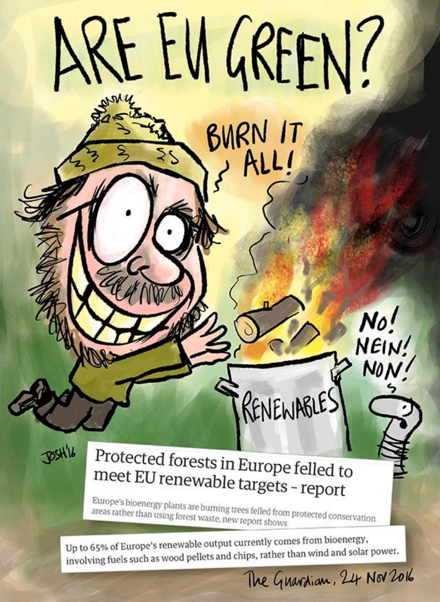 skog i EU