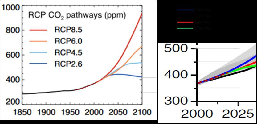 CO2 i atmosfären