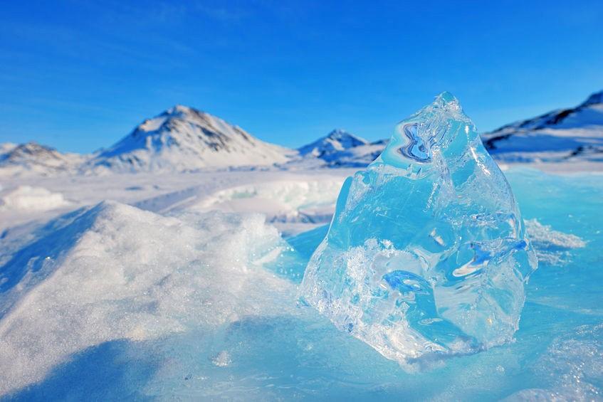 Grönlandsis