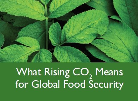 Rising-CO2-Global-Food-Security-cover-455x335