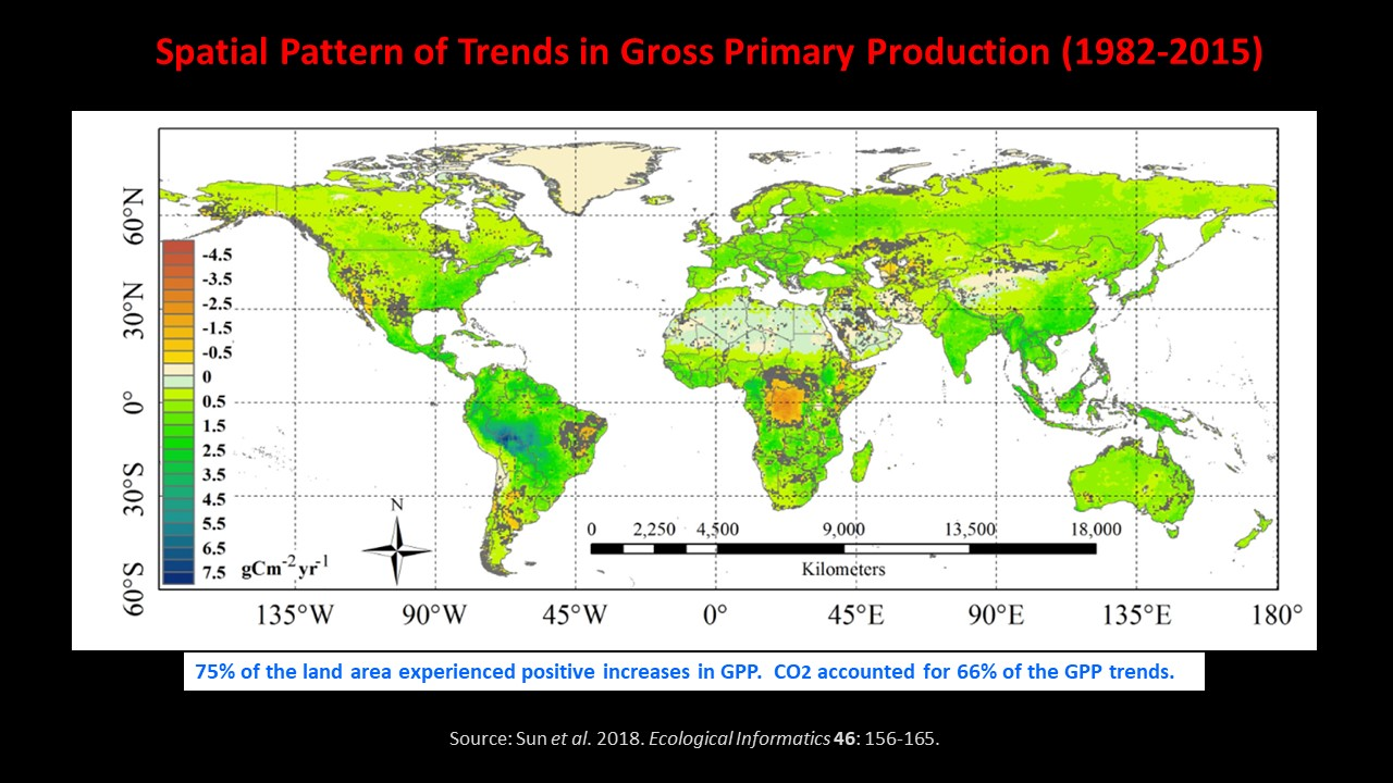 Global greening 1982 - 2015