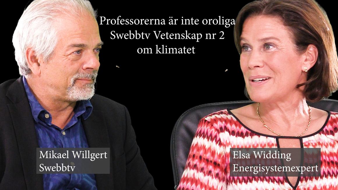 elsa o willgert